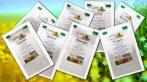 Koriander mag egész - Coriandri fructus